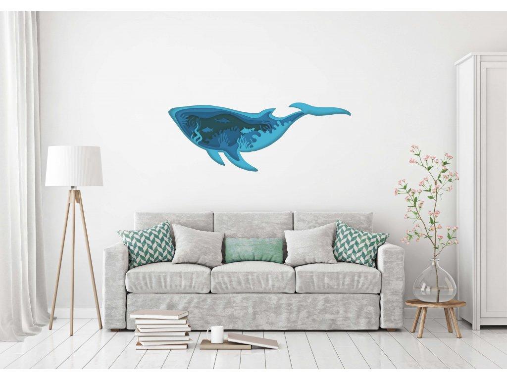 NALEP zed velryba more01