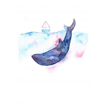Velryba s lodí