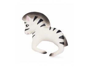 zoe the zebra.jpg