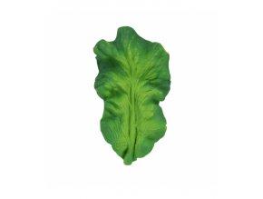 kendall the kale.jpg 2