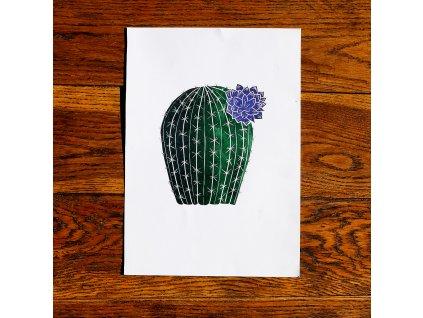 Kaktus A4