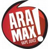 aramax about logo