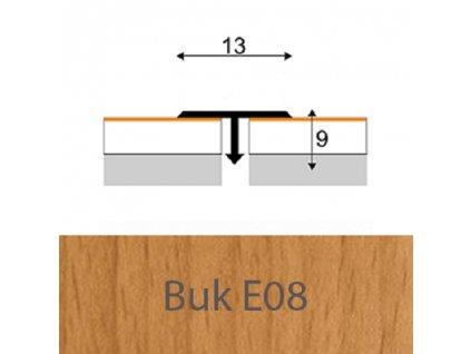 t13 E08