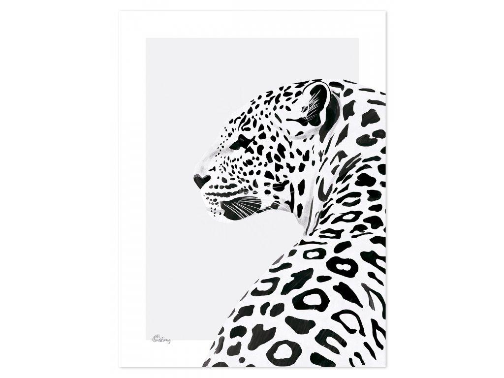 P0266 leopard