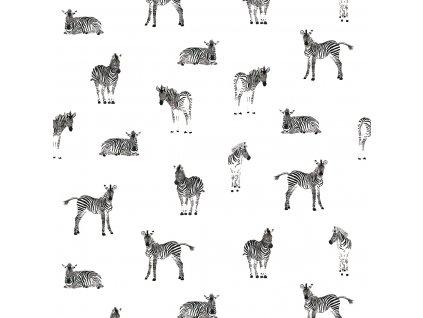 H0463 pp zebra 50x40