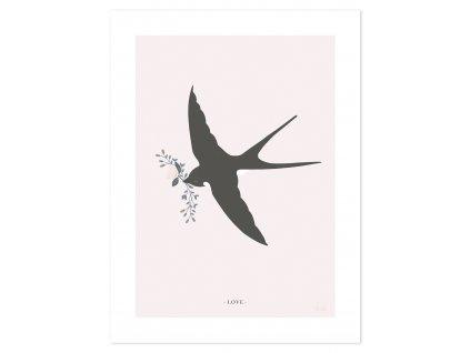 P0290 Adele Swallow
