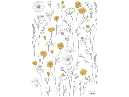 S1376 A3 fleurs chamomille