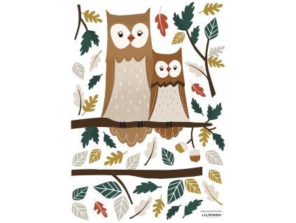 S1354 A3 Owl family