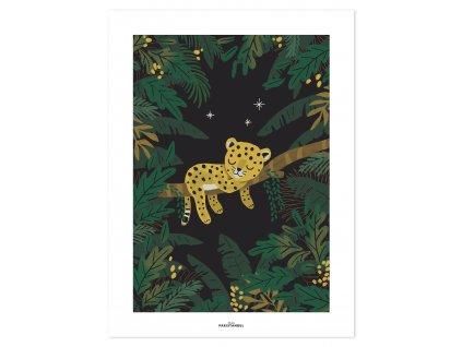 P0294 Cheetah jungle night
