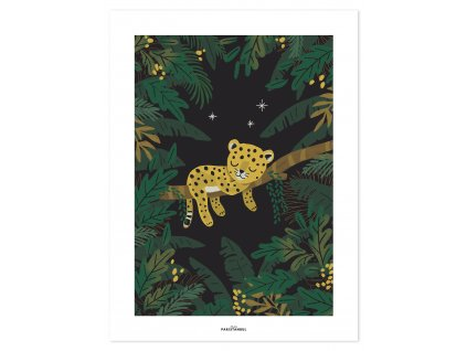 P0294 Cheetah jungle night