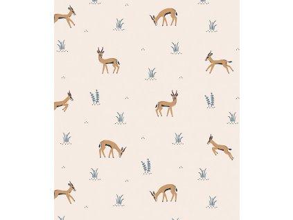 h0595 papier peint savane gazelles tanzania