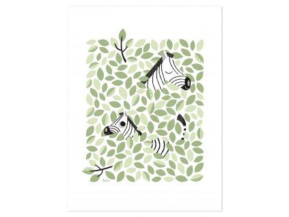 Plakát LILIPINSO Hide & Seek In the canopy (Zebra)
