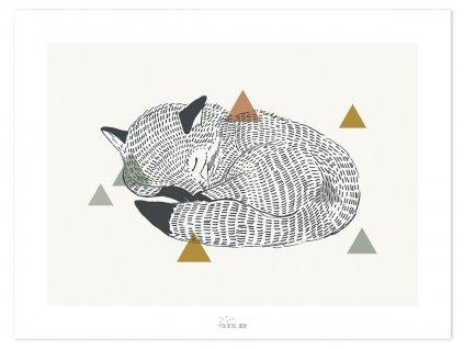 Plakat Lilipinso Enchanted fox