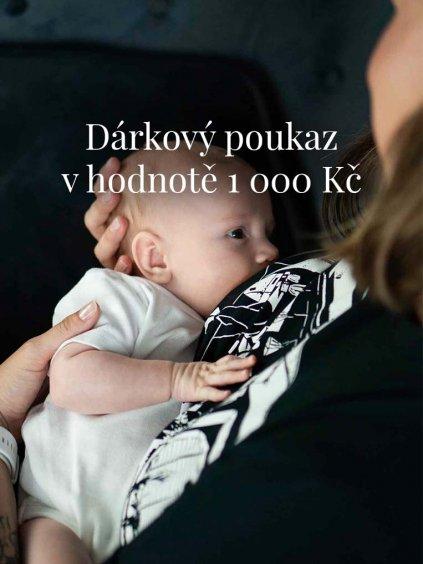 Dárkový poukaz v hodnotě 1 000 Kč na nákup zboží v obchodě www.littlehustler.cz