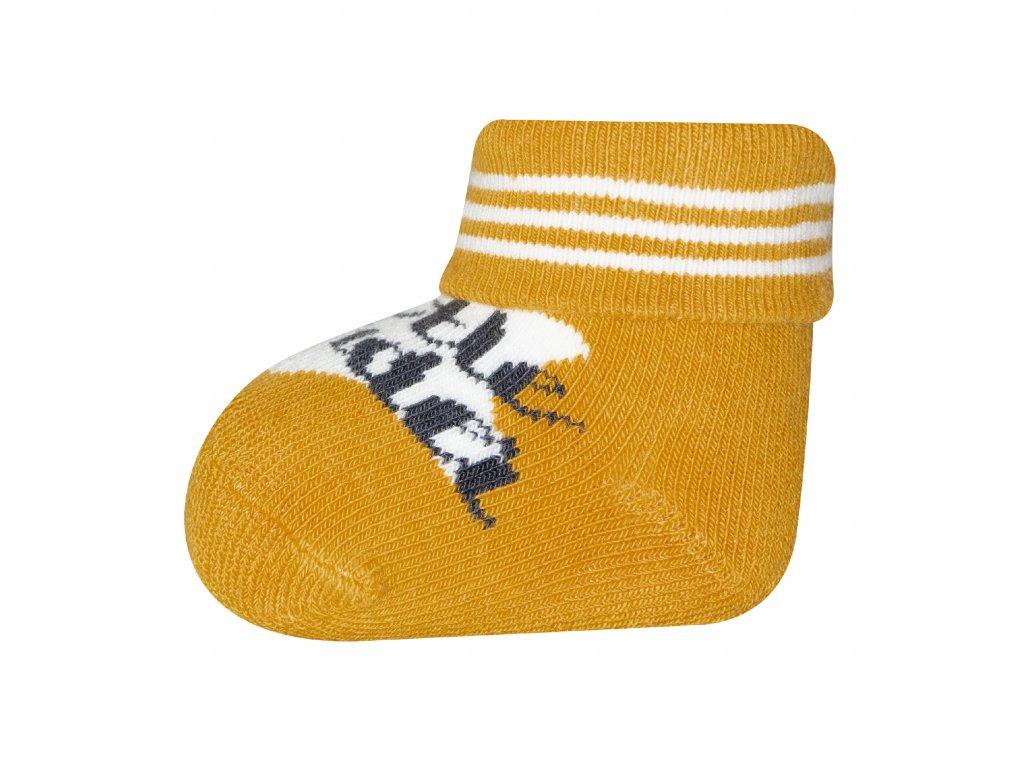 Ponožky s nápisem little wonder - newborn 2 páry