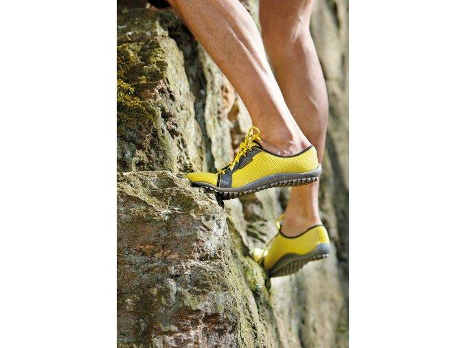Leguano žluté aktiv gelb 01