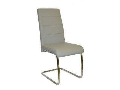 Jídelní židle Y 100 šedá