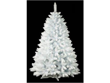 Nolshops - Borovice bílá 220 cm - Akce