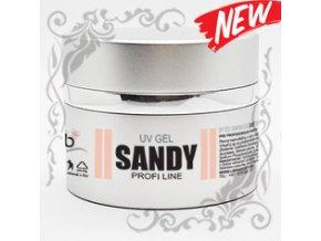 sandy silver 16 7 2021