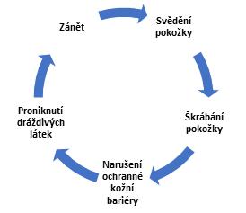 Cyklus průběhu atopického ekzému - LOBEY
