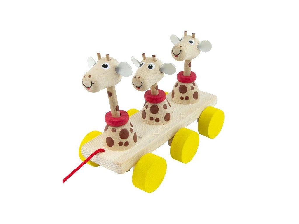 Tři žirafy na liště