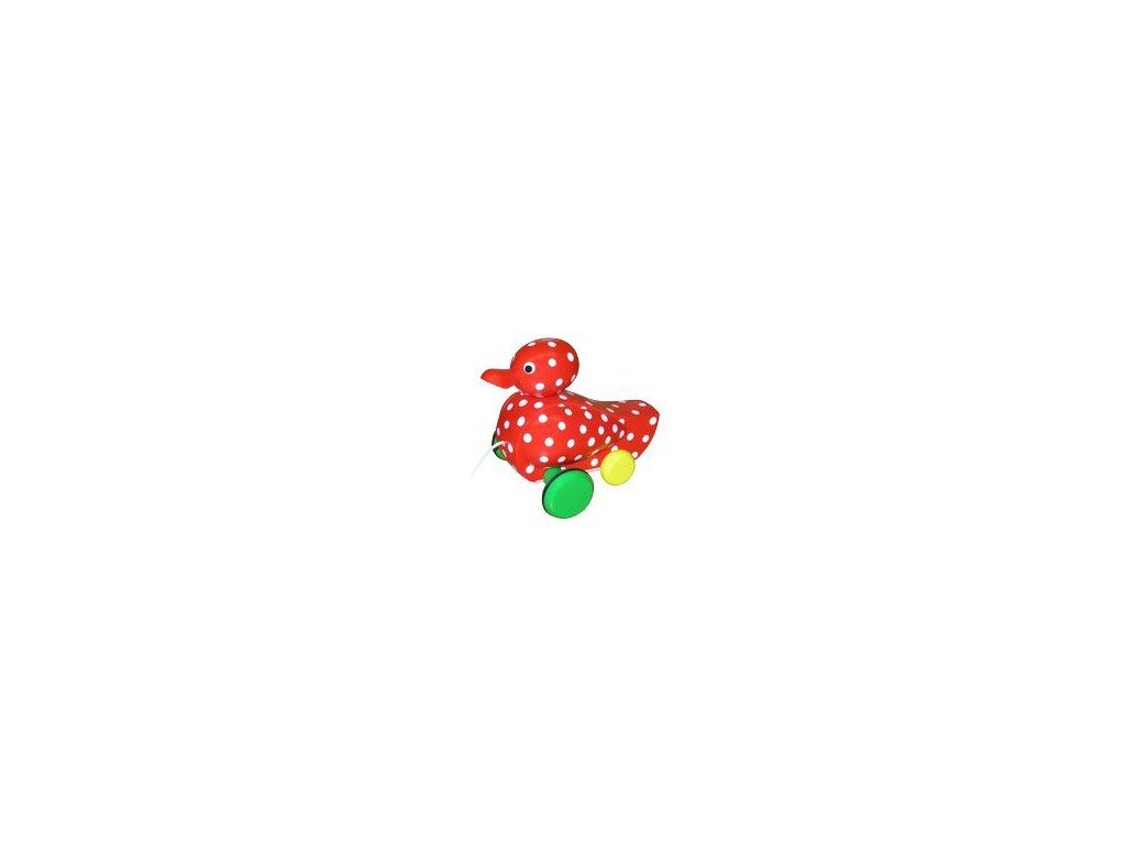 Kačer červený s puntíky