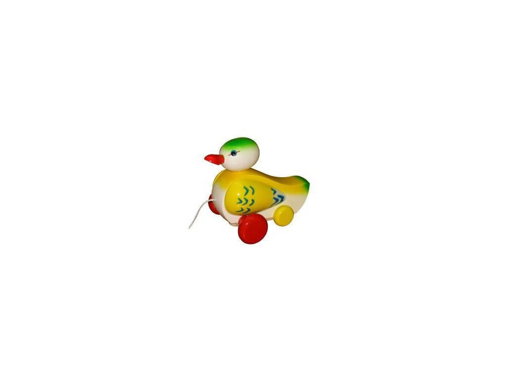 Kačer zelenožlutý