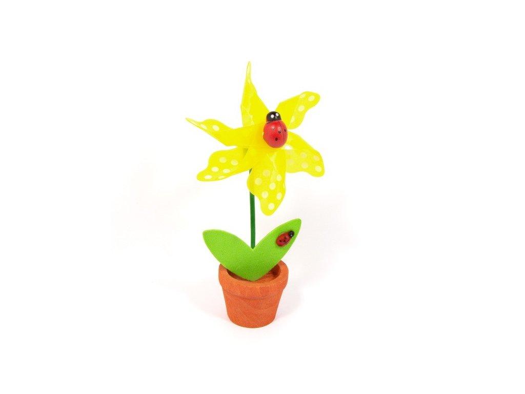 Žlutá květina - větrník