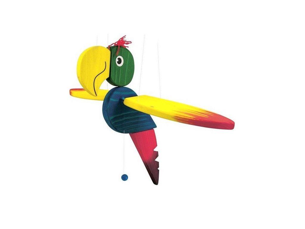 Létací papoušek velký - žíhaný I.