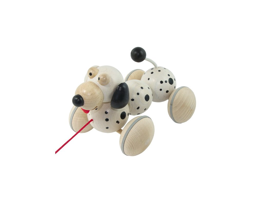 pes dalmatin vrtík