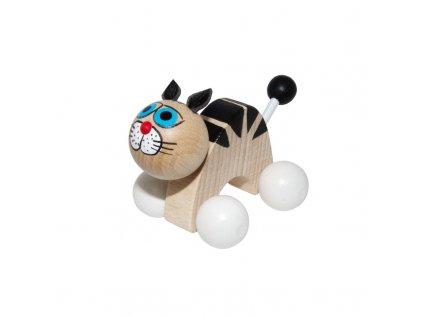 kočka bílá kolečka