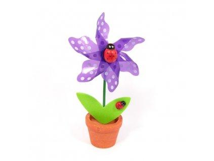 Fialová květina - větrník