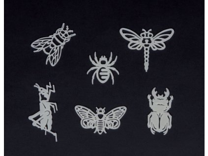 Svítící hmyz