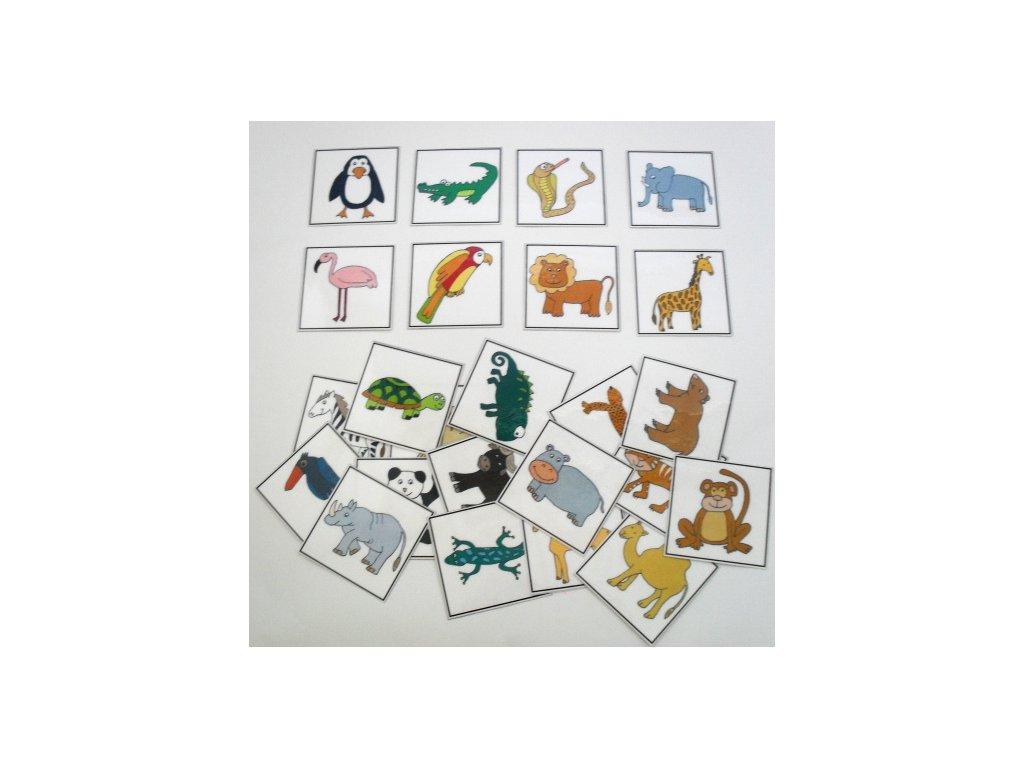 Zvířata 2 - obrázkové kartičky