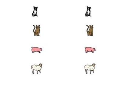 Spojování 1 (zvířata k sobě) - naučná karta