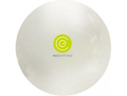Ecowellness gymball