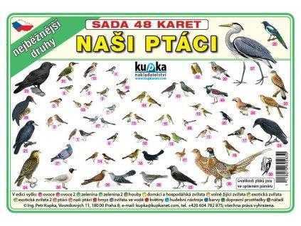Sada 48 karet nasi ptaci