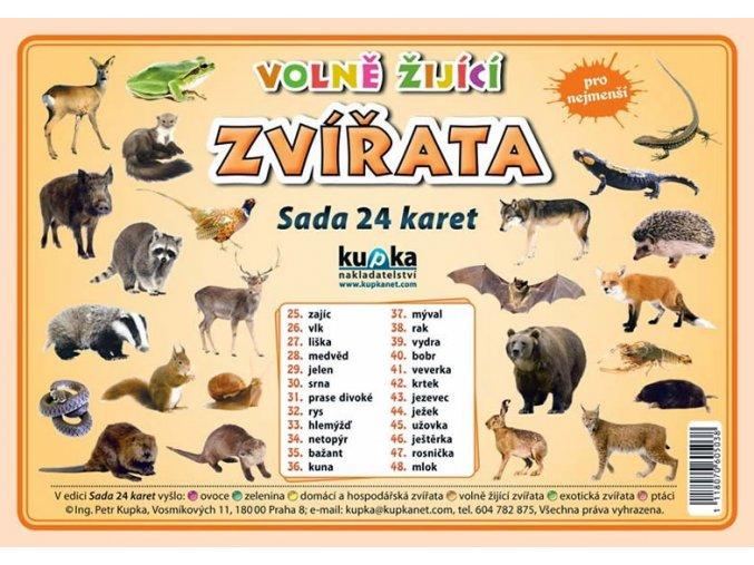 Volně žijící zvířata - Sada 24 karet, Petr Kupka