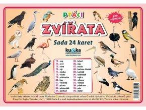 Ptáci zvířata - Sada 24 karet, Petr Kupka