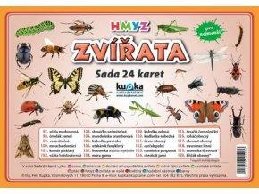 Zvířata hmyz - Sada 24 karet, Petr Kupka