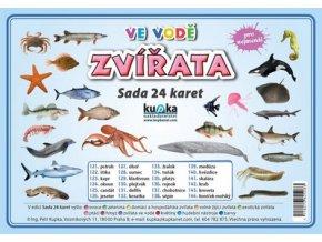 Zvířata ve vodě - Sada 24 karet, Petr Kupka