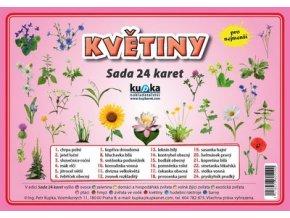 Květiny - Sada 24 karet, Petr Kupka
