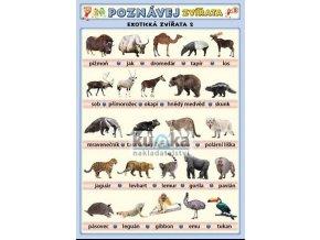 Poznávej 5 - zvířata (exotická 2, ve vodě), Petr Kupka