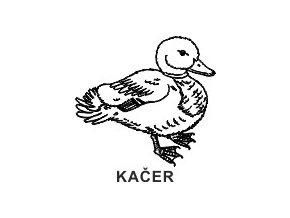 Obrázkové razítko - KAČER