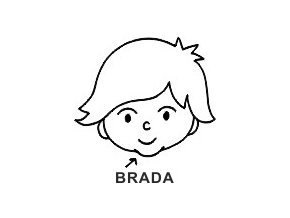 Obrázkové razítko - BRADA