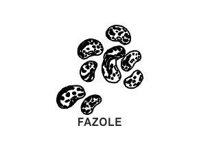 Obrázkové razítko - FAZOLE