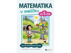 Matematika v malíčku pro 5. třídu