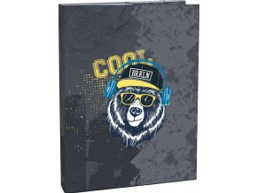 Box na sešity A4 Cool bear Stil