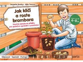 Jak klici a roste brambora