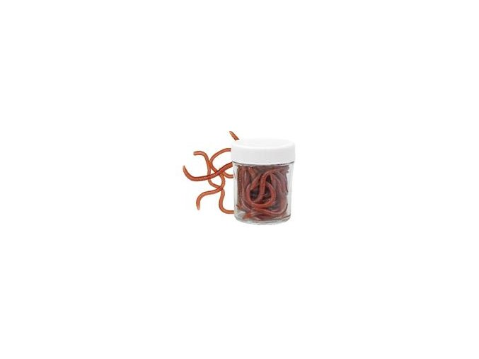 dzdzownica groundworm przynety sztuczne sloik ko